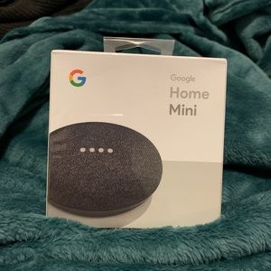 Other - Google Home Mini